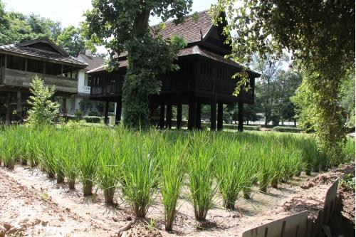 Rice Granary or Long Khao Pasang