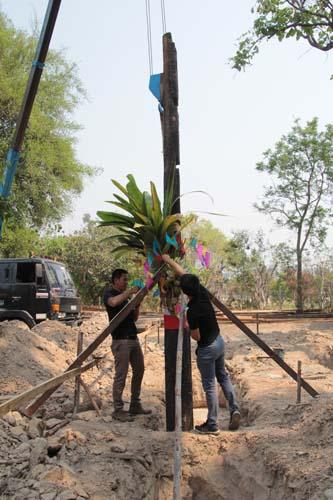 พิธีลงเสาเอกหลองข้าวนันทขว้าง อำเภอป่าซาง จังหวัดลำพูน
